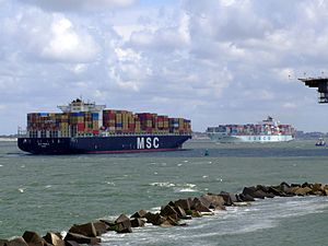MSC Pamela & Cosco Seattle pic1 at Prot of Rotterdam, Holland 29-Jul-2007.jpg