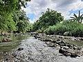 Mahaweli branch river.jpg