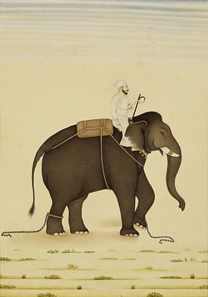 Qamar-ud-din Khan, Asif Jah I - A Mahout and its rider in service of the Mughal Emperor Muhammad Shah.