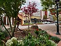 Main Street Salinas Midblock.jpg