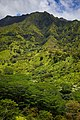 Makaleha Mountains as seen from Moalepe Trail.jpg