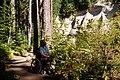 Man in Wheelchair, Gifford Pinchot National Forest (35502681644).jpg