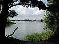 Marsworth Reservoir - geograph.org.uk - 112429.jpg