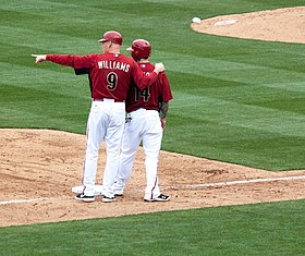 Image illustrative de l'article Matt Williams (baseball)
