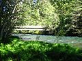 McKenzie River at Deer Creek Hot Springs.jpg