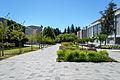 Memorial Road UBC.jpg