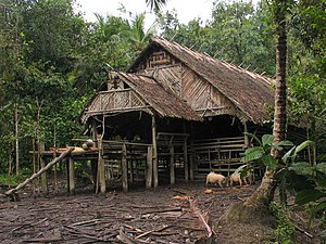 "Sakuddei - A traditional Sakuddei communal house, ""uma longhouse"" in Siberut."