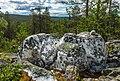 Milky quarz on Kivitunturi in Savukoski, Lapland, Finland, 2021 June.jpg