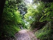 Moat between Shiroyama base and Okunoyama base