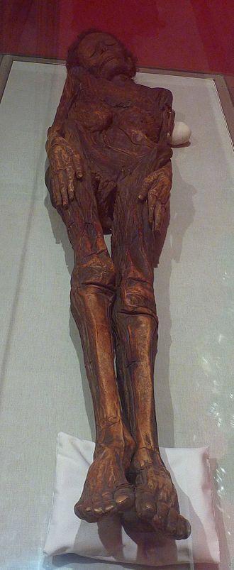 Guanche mummy of Madrid - Guanche mummy of Madrid.