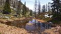 Mont Chetif - puddle.jpg