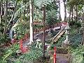 Monte Palace Tropical Garden DSCF0127 (4643089080).jpg