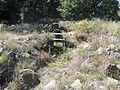 Monumento megalítico de Chão Redondo 2 - Talhadas.jpg