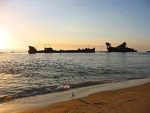 Moreton Island - Several shipwrecks provide a safe diving spot at Tangalooma. They were placed there as a breakwater