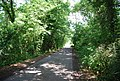 Mote Lane near Saxby's - geograph.org.uk - 1376633.jpg