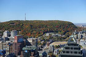 Le mont Royal vu depuis l'observatoire de la Place Ville-Marie.
