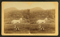 Mt. Agassiz, Bethlehem, N.H, from Robert N. Dennis collection of stereoscopic views.png
