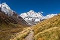 Mt. Dhaulagiri as seen from Annapurna Base Camp-5324.jpg