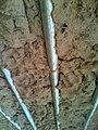 Mud House 3.jpg