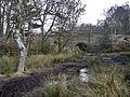 Muddy path and railway bridge - geograph.org.uk - 1755139.jpg