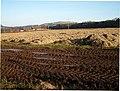 Muddy tracks at field edge - geograph.org.uk - 117036.jpg