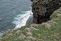 Mull Head Cliff - panoramio.jpg