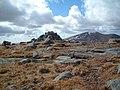 Mullwharchar cairn - geograph.org.uk - 144554.jpg