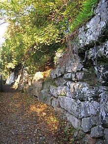 Enceinte basse envahie par la végétation, le long d'un sentier, constituée de grosses pierres agencées.