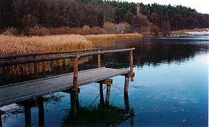 Dumbrava Sibiului Natural Park - Dumbrava Sibiului Natural Park (lake)