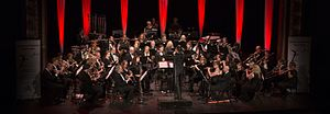 Newark and Sherwood Concert Band - Image: N&SCB MG 0112 cropped