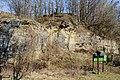 NDOÖ 313 Kremsmünster Steinbruch Wolfgangstein 1.jpg