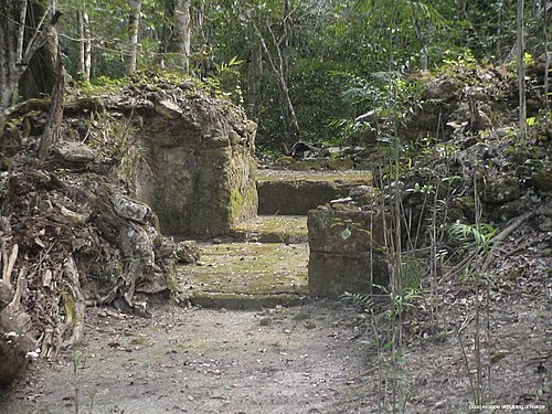 The remains of the Nakbe palace from the mid pre-Classic period, Mirador Basin, Peten, Guatemala. Nakbe str.JPG