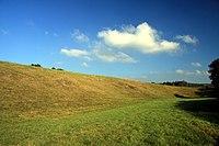 Natural monument Simeckova stran in Cesky Krumlov District in 2011 (7).JPG