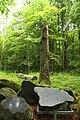 Nature reserve Žižkův vrch in summer 2012 (1).JPG