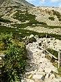 Naučný chodník okolo Skalnatého plesa - panoramio (1).jpg