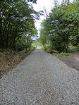 Nebenbahn Wennemen-Finnentrop (5829648556).jpg