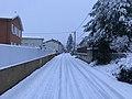 Neige à Saint-Maurice-de-Beynost (Ain, France) - décembre 2017 - 0.JPG