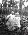 Niños junto a una calabaza gigante, 1919.jpg