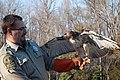Nice Birdie! Good Birdie! (6773907058).jpg