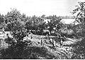 Niemiecka piechota zdobywa nierozpoznaną wieś (2-38).jpg
