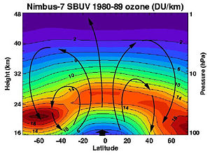 Ozone layer - Brewer-Dobson circulation in the ozone layer.