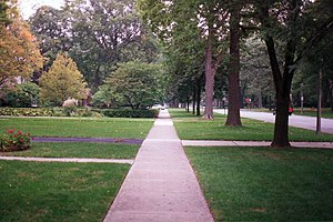 "Road verge - A ""parkway"" with street trees in Oak Park, Illinois."