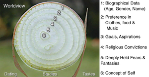 Onion model - An onion model used in social penetration theory