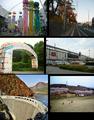 Osaki city mon.png