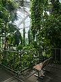 Osnabrück - Botanischer Garten - Tropenhaus - Innenansicht -BT- 02.jpg