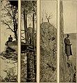 Outing (1885) (14590191420).jpg