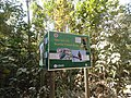 P63 Lawachara National Park, In Moulovibajar, Bangladesh.jpg