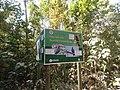 P63 Lawachara National Park, In Moulovibajar, Bangladesh.jpg
