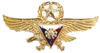 PAF Gold Wings Badge.png