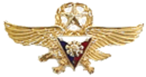 John Dale Ryan - Image: PAF Gold Wings Badge
